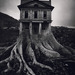 Cropped_75_jerry-uelsmann_tree_house1