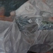 Cropped_75_teodora_20axente__20silver_20foot__202012__20oil_20on_20canvas__2026.4_20x_2055.5_20in_20_67_20x_20141_20cm_
