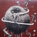Cropped_75_phlegm_20nyc_20big_20apple