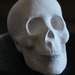 Cropped_75_dmg_lh_skull1_web