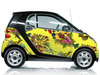 Cropped_100_smart-car_20fallen_20fruit_206