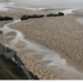 Cropped_75_normandy
